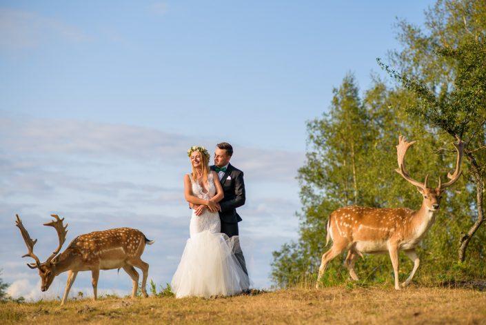 Foto dupa nunta Cristi si Adriana